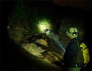 O Lanterna LED cu un fascicul luminos puternic, autonomie indelungata si modalitati multiple de semnalizare devine vitala in situatii de urgenta.